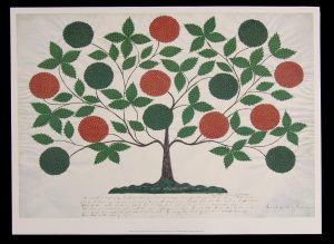 Ann Lees Tree of Life